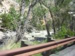 wildwest trip 337